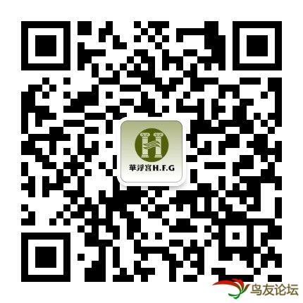 phpboy_1481281770175_90.jpg